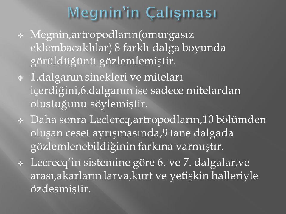 Megnin'in Çalışması Megnin,artropodların(omurgasız eklembacaklılar) 8 farklı dalga boyunda görüldüğünü gözlemlemiştir.