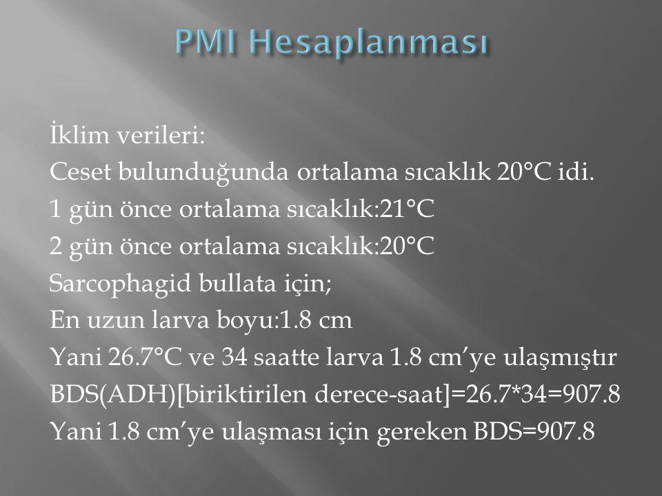 PMI Hesaplanması