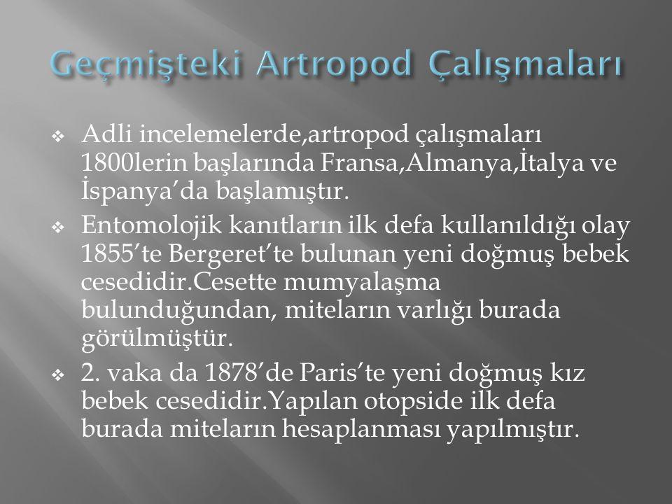 Geçmişteki Artropod Çalışmaları