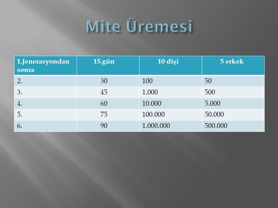 Mite Üremesi 1.Jenerasyondan sonra 15.gün 10 dişi 5 erkek 2. 30 100 50