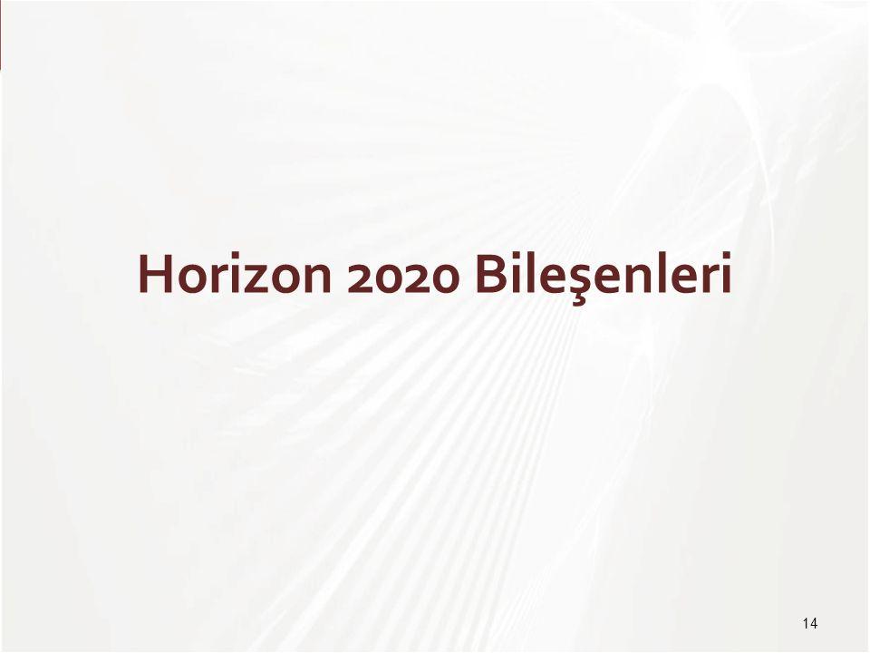 Horizon 2020 Bileşenleri