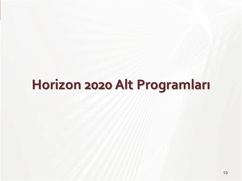 Horizon 2020 Alt Programları