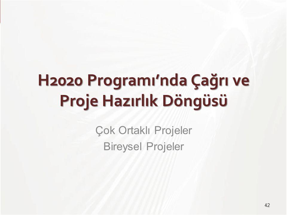 H2020 Programı'nda Çağrı ve Proje Hazırlık Döngüsü