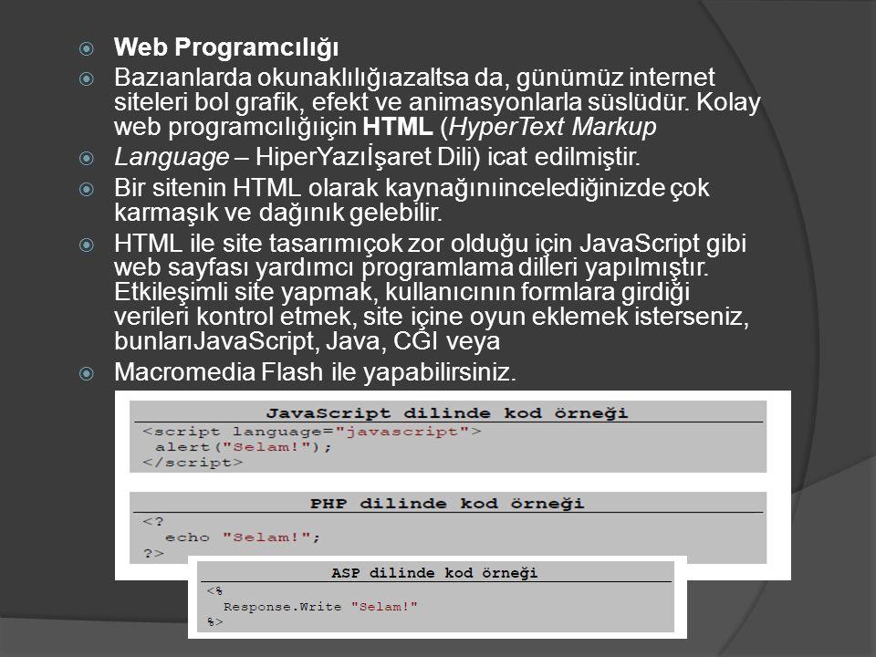 Web Programcılığı