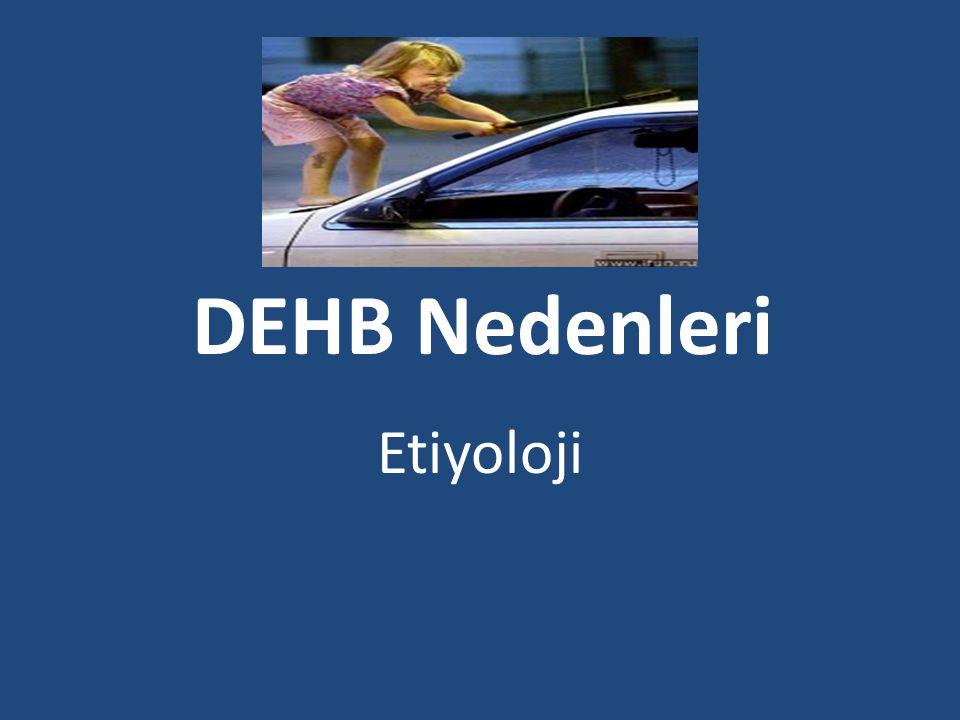 DEHB Nedenleri Etiyoloji