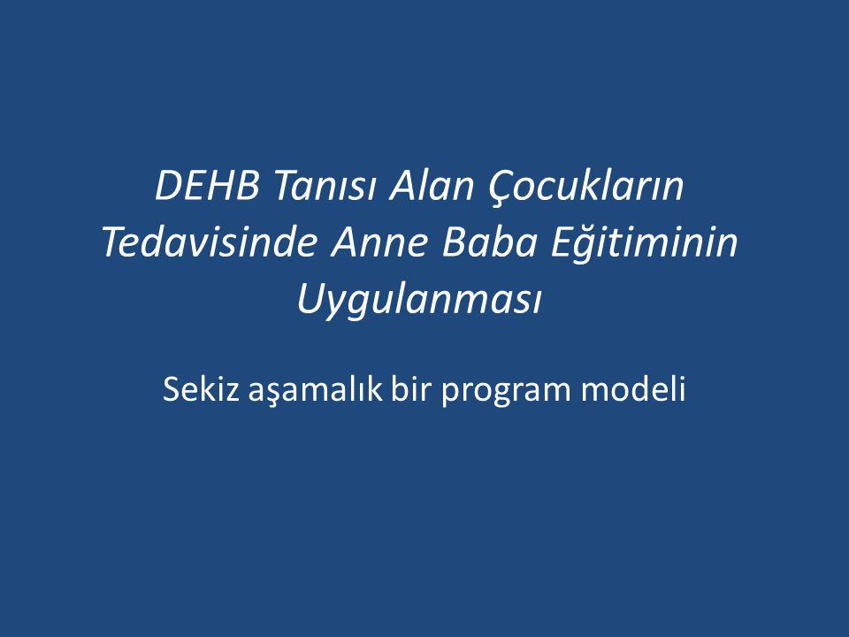 Sekiz aşamalık bir program modeli