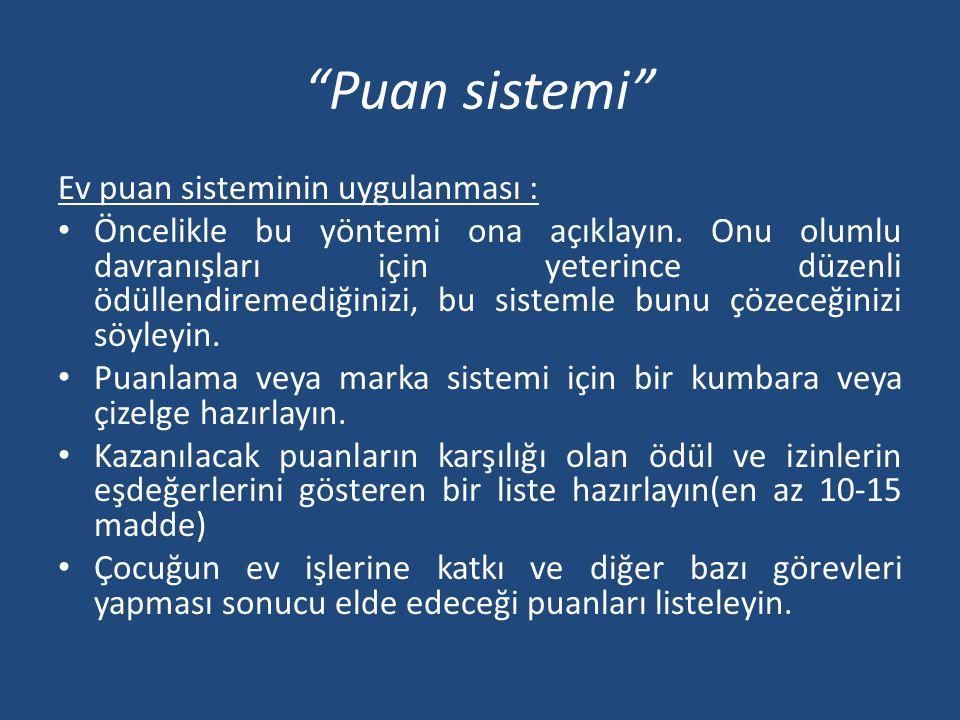 Puan sistemi Ev puan sisteminin uygulanması :