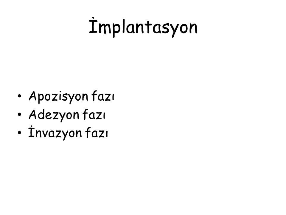 İmplantasyon Apozisyon fazı Adezyon fazı İnvazyon fazı