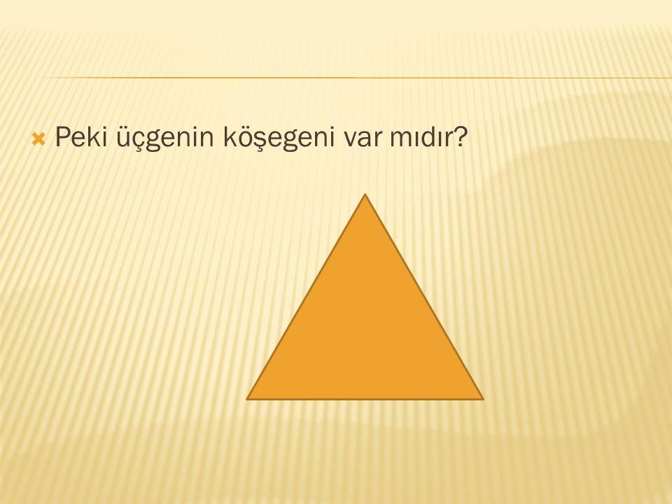 Peki üçgenin köşegeni var mıdır