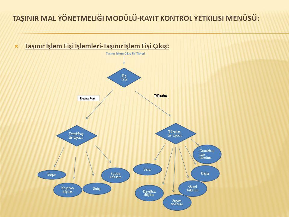 TaşInIr Mal Yönetmeliği Modülü-KayIT Kontrol yetkILISI Menüsü: