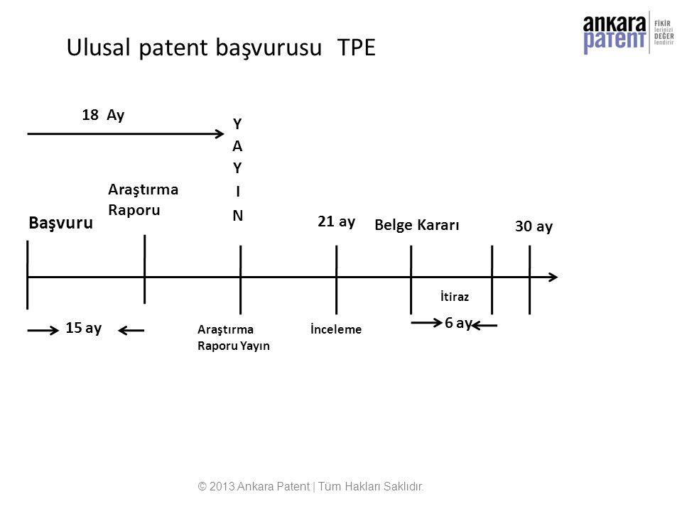 Ulusal patent başvurusu TPE