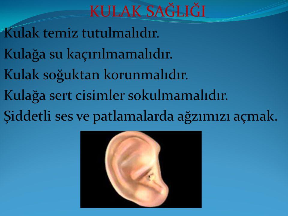 Kulak temiz tutulmalıdır. Kulağa su kaçırılmamalıdır.