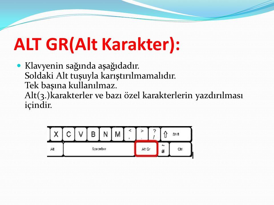 ALT GR(Alt Karakter):