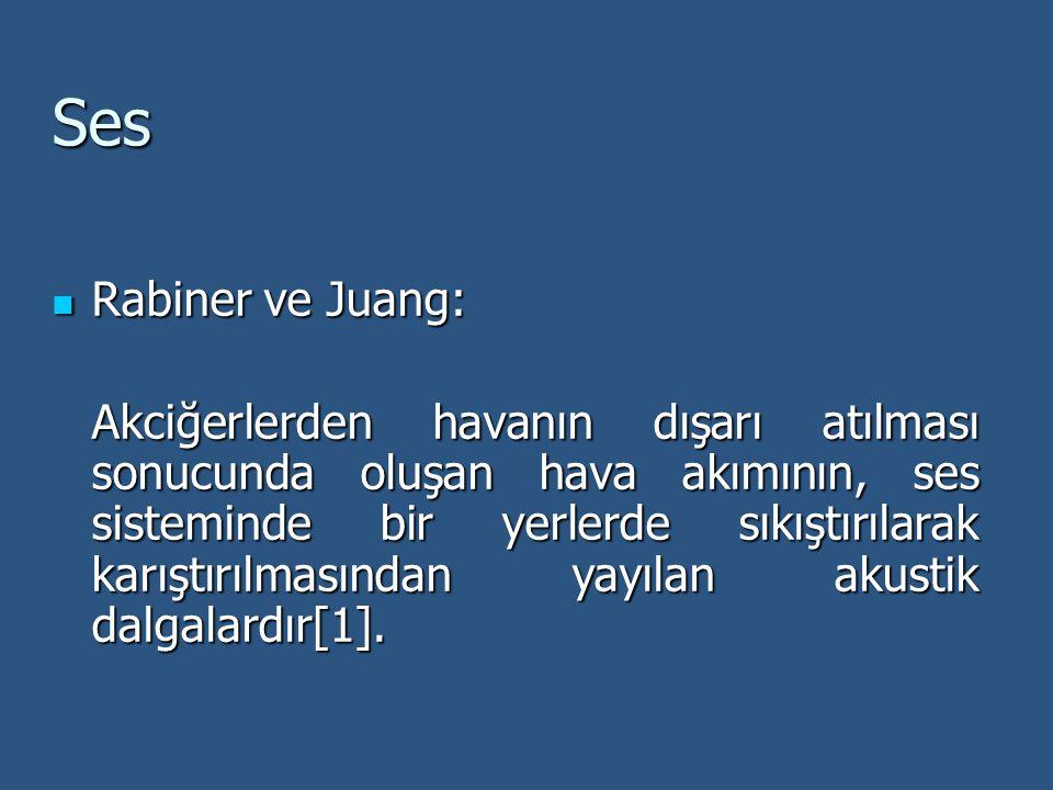 Ses Rabiner ve Juang: