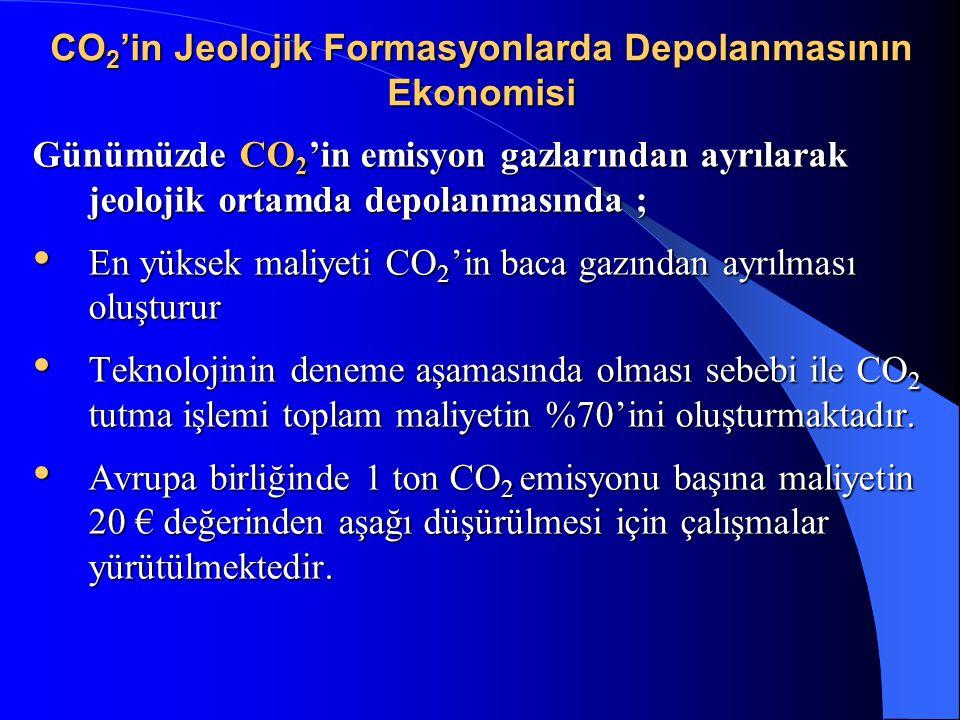 CO2'in Jeolojik Formasyonlarda Depolanmasının Ekonomisi