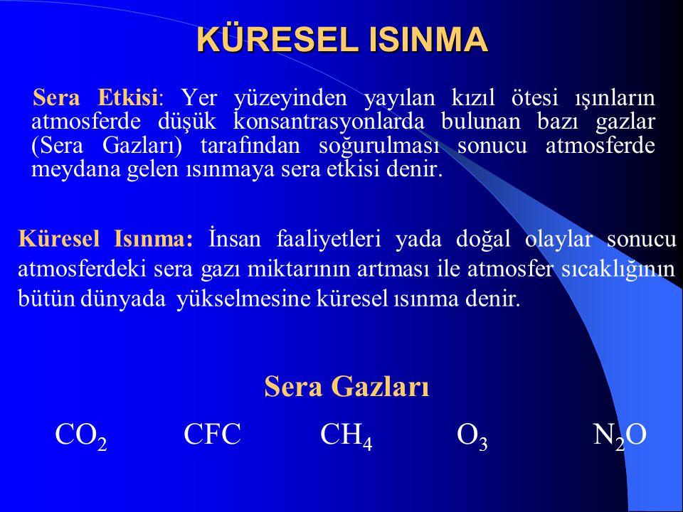 KÜRESEL ISINMA Sera Gazları CO2 CFC CH4 O3 N2O