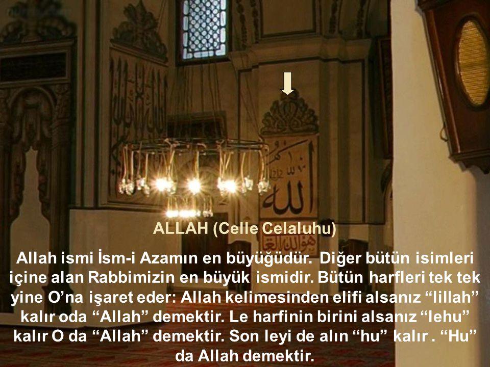 ALLAH (Celle Celaluhu)