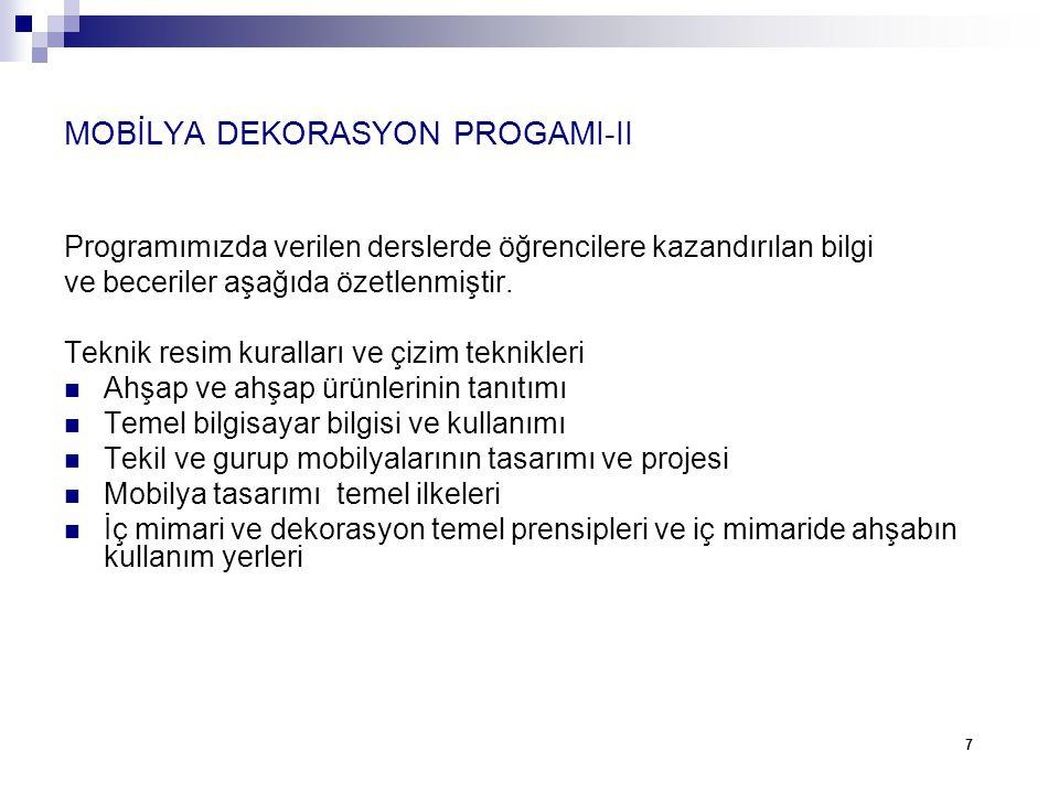 MOBİLYA DEKORASYON PROGAMI-II