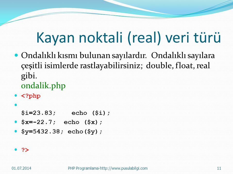 Kayan noktali (real) veri türü