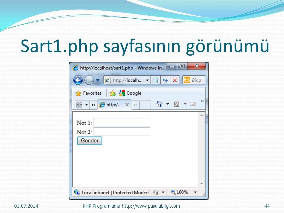 Sart1.php sayfasının görünümü