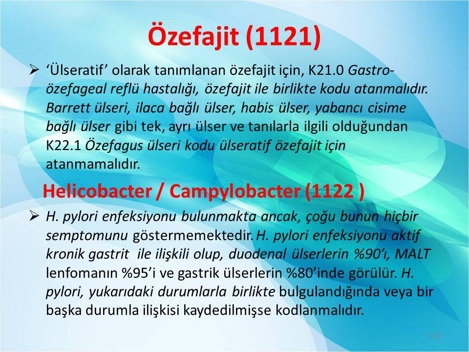 Özefajit (1121) Helicobacter / Campylobacter (1122 )