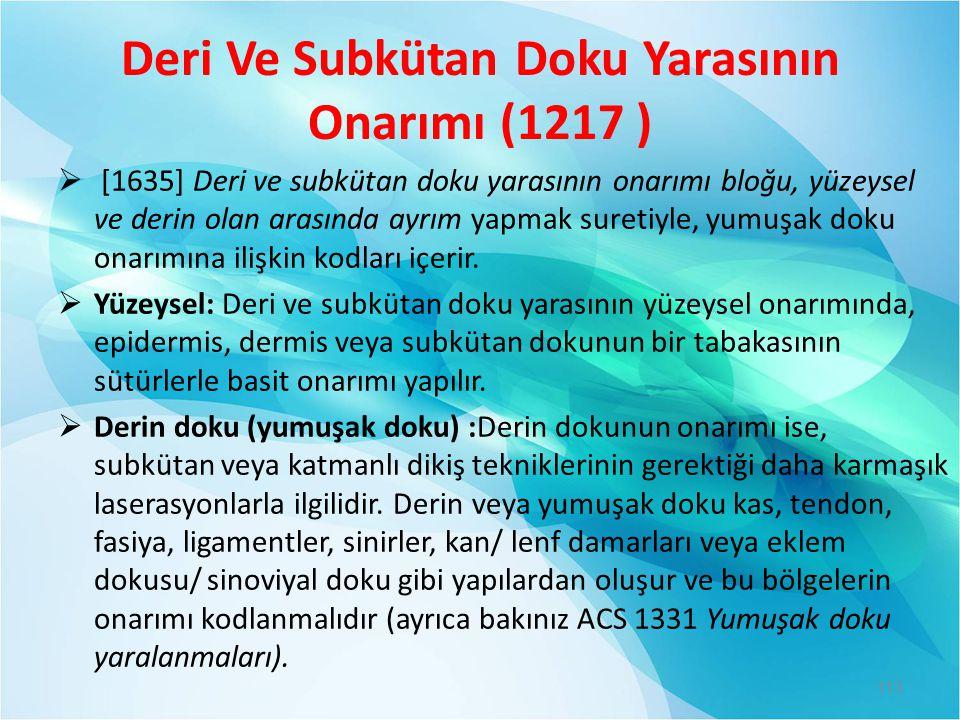 Deri Ve Subkütan Doku Yarasının Onarımı (1217 )