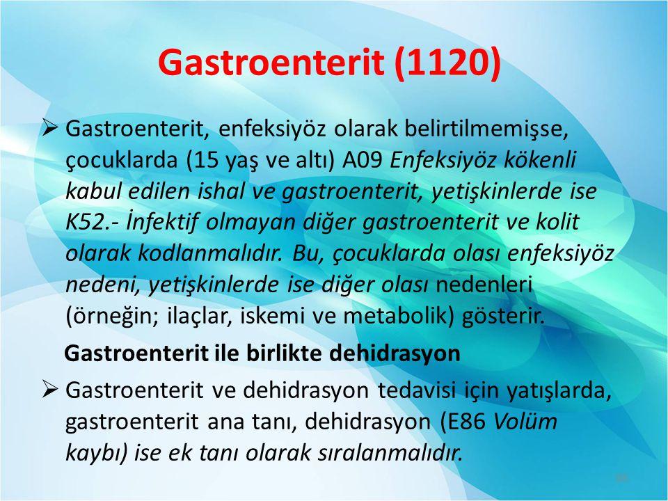 Gastroenterit (1120)