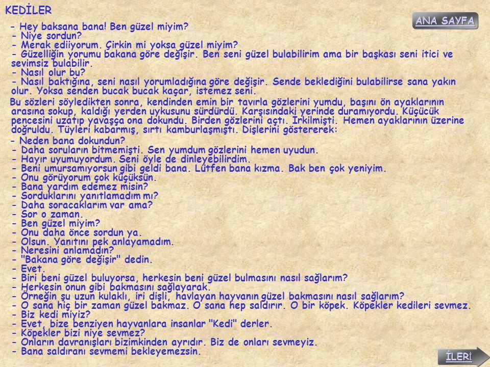 KEDİLER ANA SAYFA.