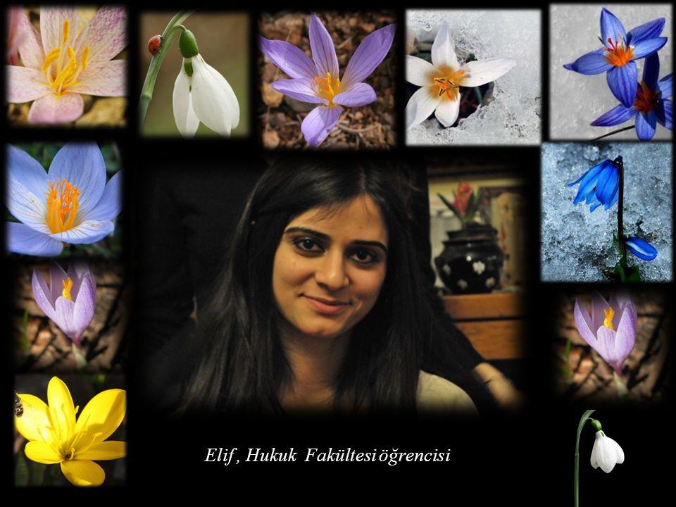 Elif , Hukuk Fakültesi öğrencisi