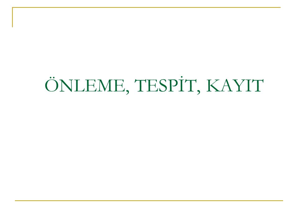 ÖNLEME, TESPİT, KAYIT ULUSAL FON 31
