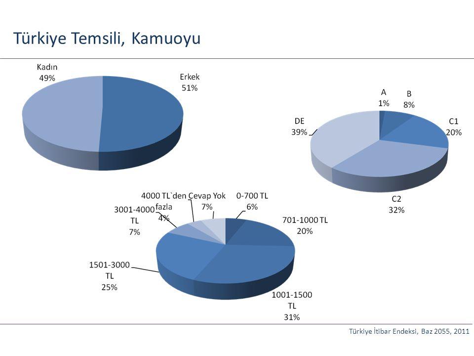 Türkiye Temsili, Kamuoyu