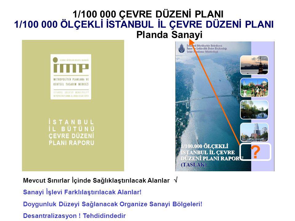 1/100 000 ÖLÇEKLİ İSTANBUL İL ÇEVRE DÜZENİ PLANI
