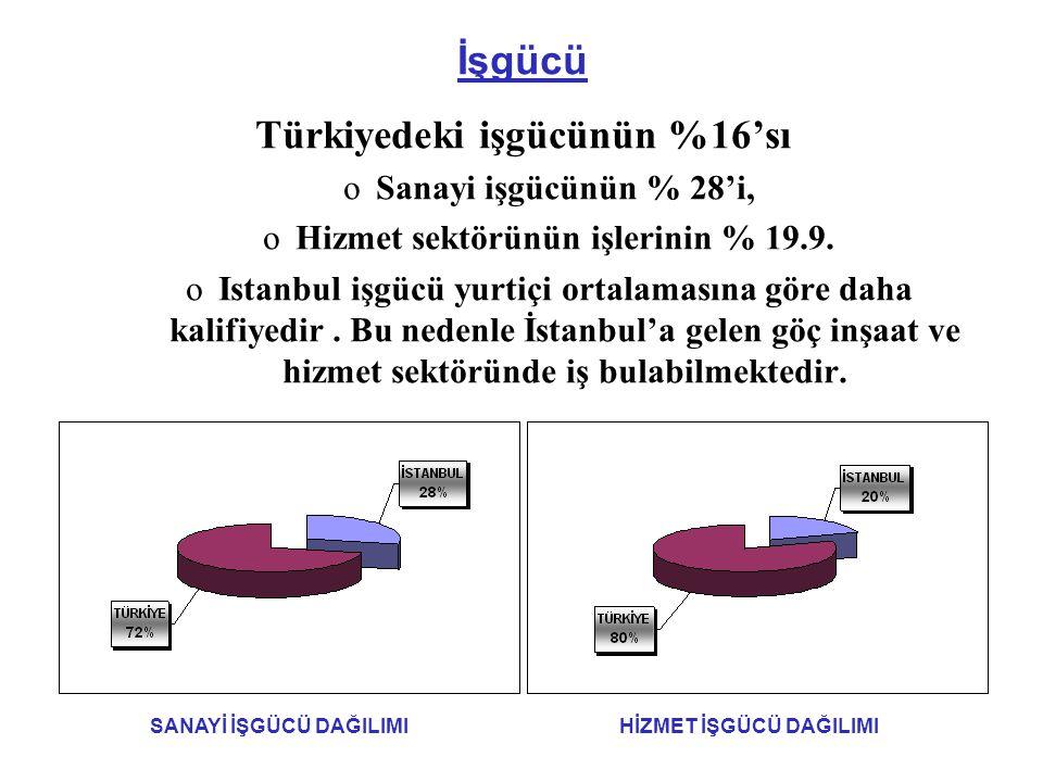 Türkiyedeki işgücünün %16'sı Hizmet sektörünün işlerinin % 19.9.
