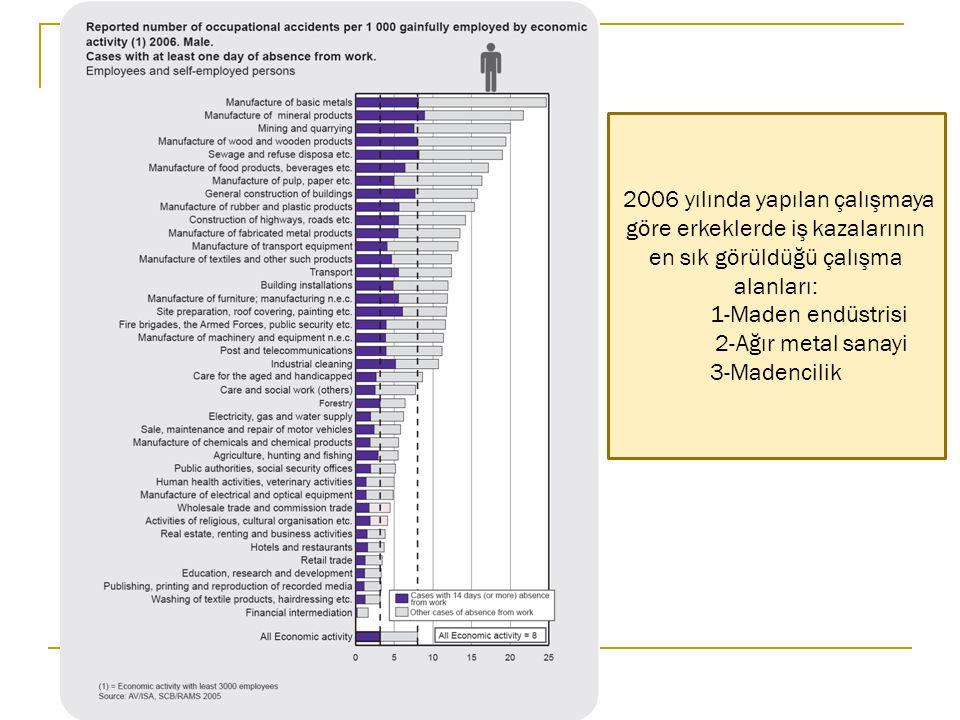 2006 yılında yapılan çalışmaya göre erkeklerde iş kazalarının en sık görüldüğü çalışma alanları: