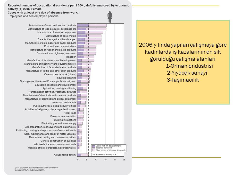 2006 yılında yapılan çalışmaya göre kadınlarda iş kazalarının en sık görüldüğü çalışma alanları