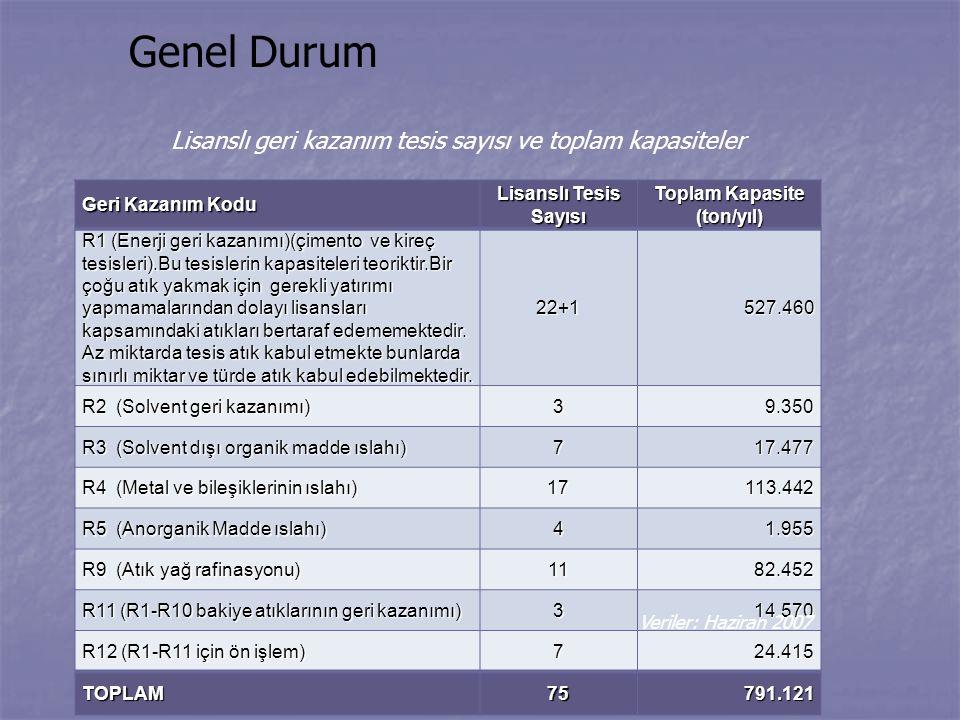 Toplam Kapasite (ton/yıl)