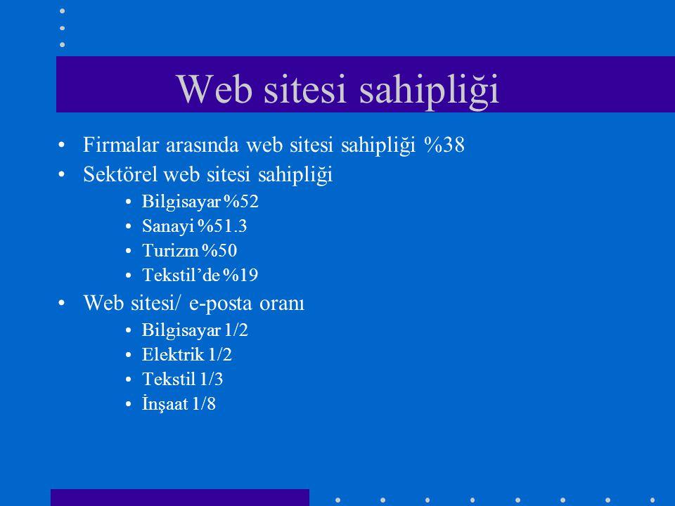 Web sitesi sahipliği Firmalar arasında web sitesi sahipliği %38