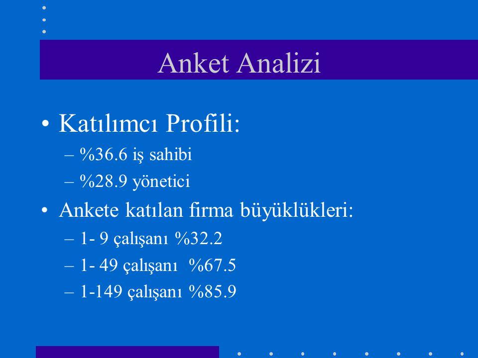 Anket Analizi Katılımcı Profili: Ankete katılan firma büyüklükleri: