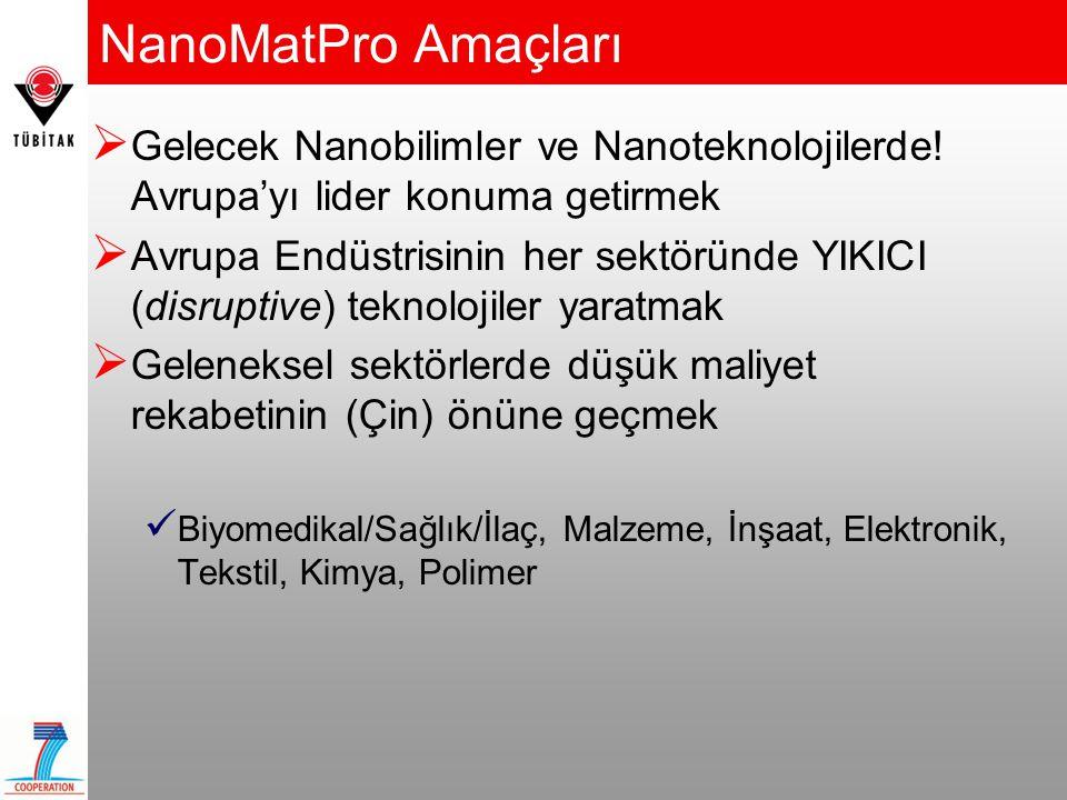 NanoMatPro Amaçları Gelecek Nanobilimler ve Nanoteknolojilerde! Avrupa'yı lider konuma getirmek.