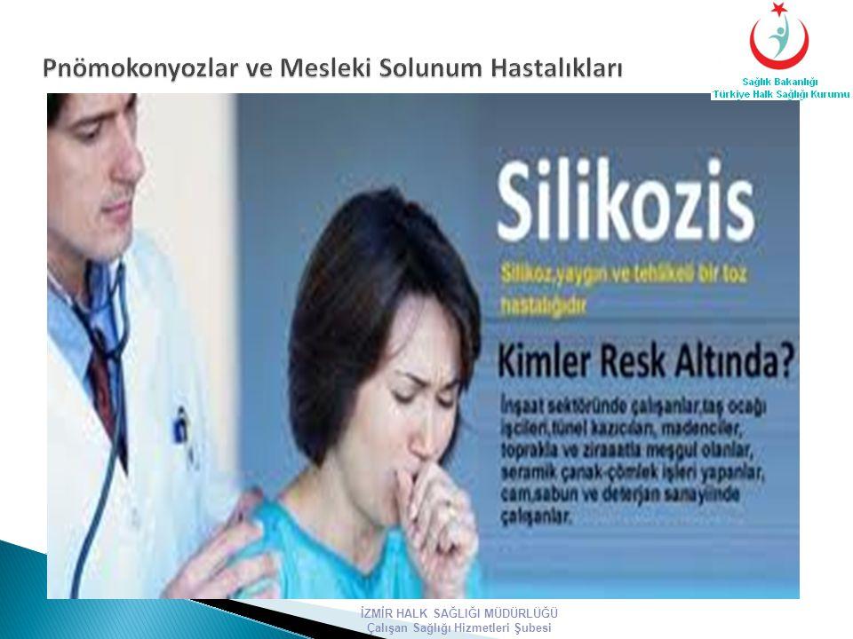 Pnömokonyozlar ve Mesleki Solunum Hastalıkları
