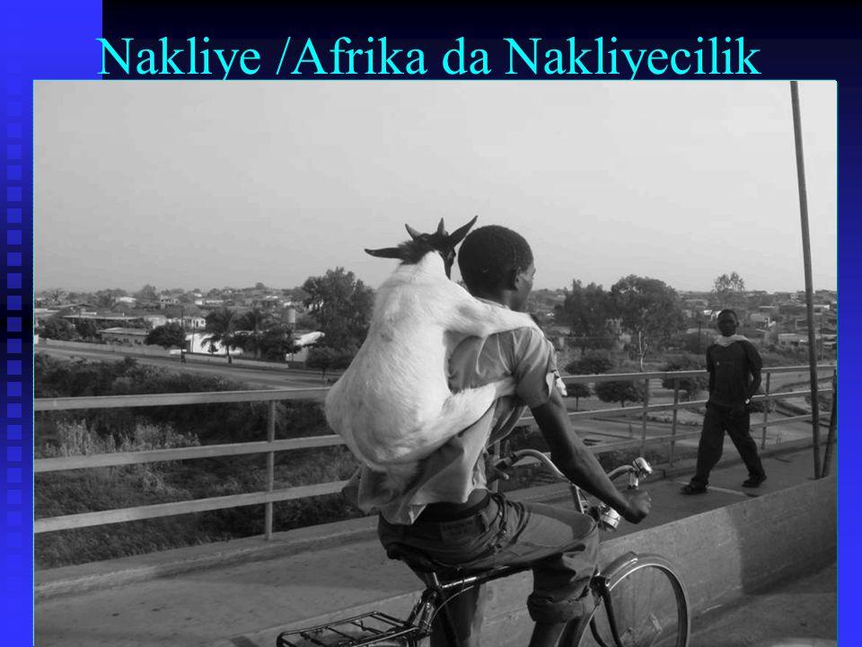 Nakliye /Afrika da Nakliyecilik