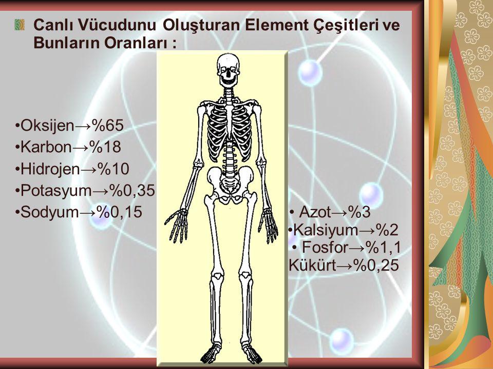 Canlı Vücudunu Oluşturan Element Çeşitleri ve Bunların Oranları :