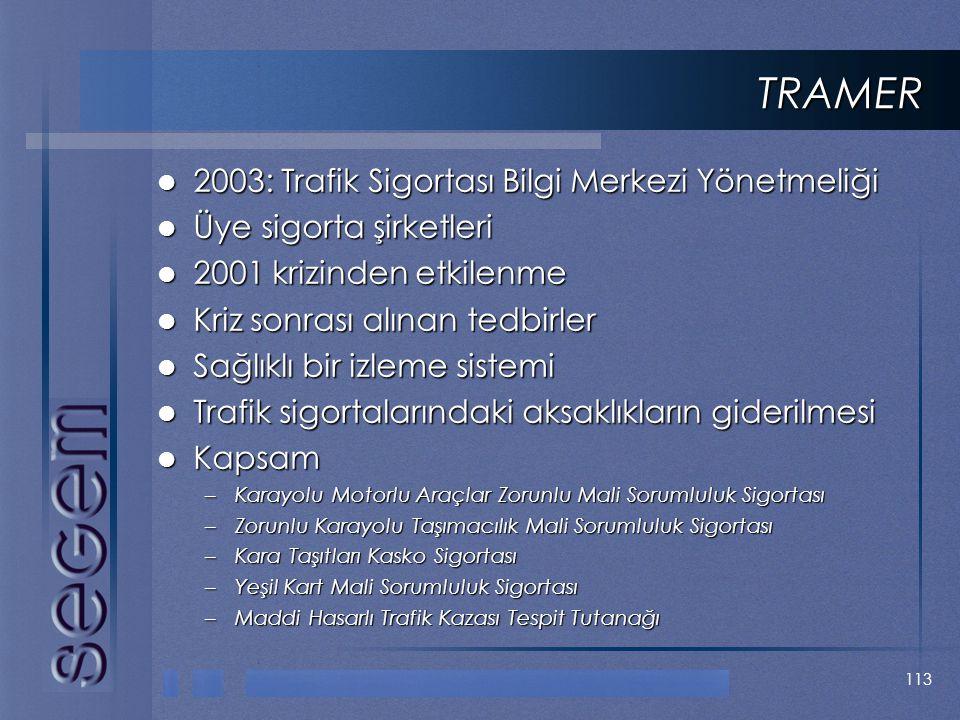 TRAMER 2003: Trafik Sigortası Bilgi Merkezi Yönetmeliği