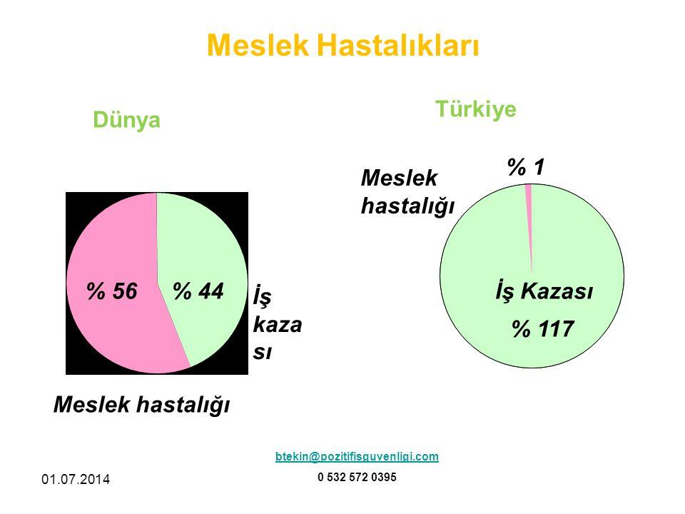 Meslek Hastalıkları Türkiye Dünya % 1 Meslek hastalığı % 56 % 44