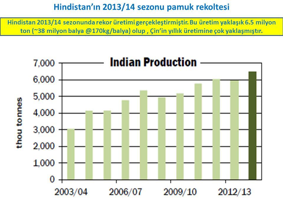 Hindistan'ın 2013/14 sezonu pamuk rekoltesi