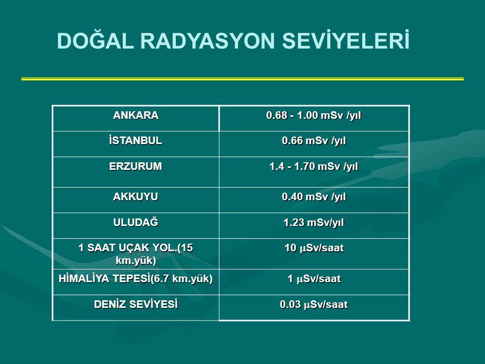 HİMALİYA TEPESİ(6.7 km.yük)