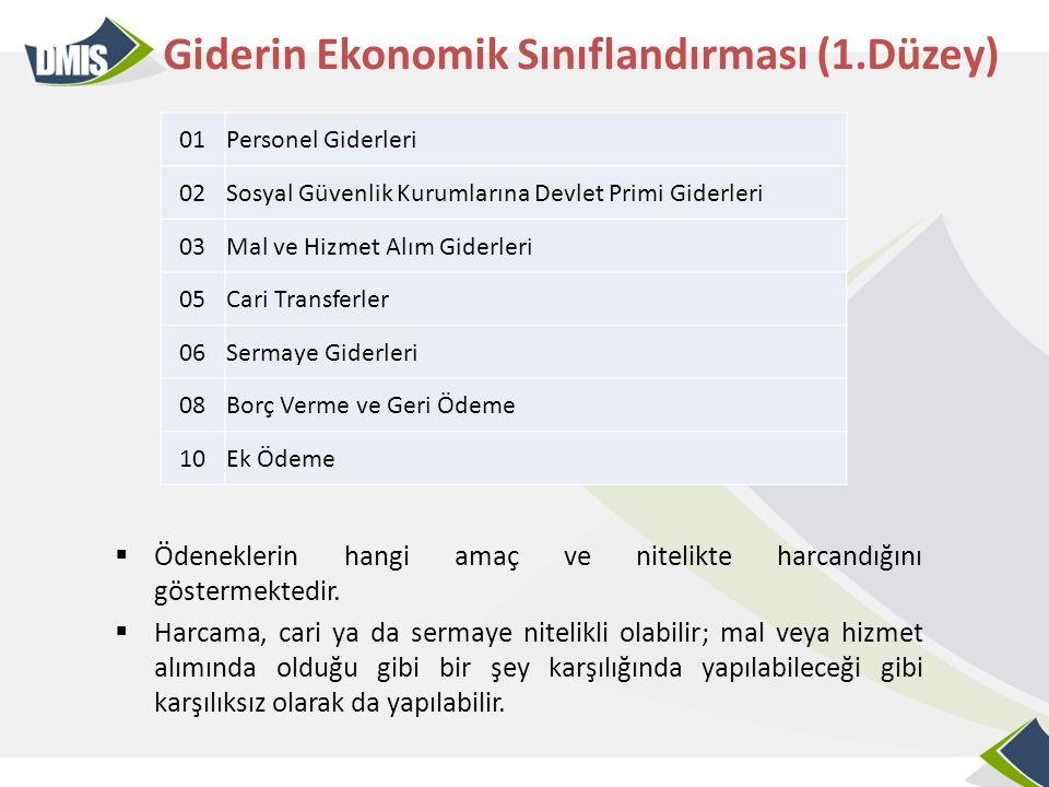 Giderin Ekonomik Sınıflandırması (1.Düzey)
