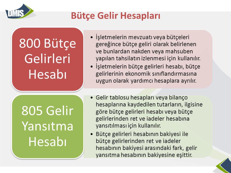 800 Bütçe Gelirleri Hesabı