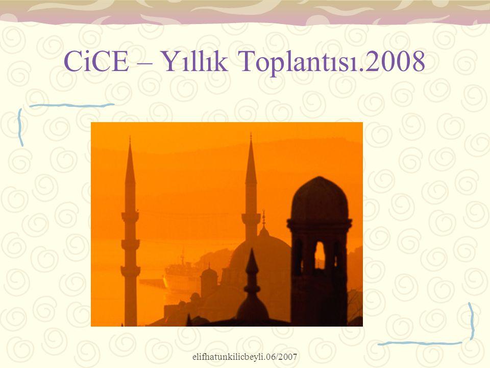 CiCE – Yıllık Toplantısı.2008