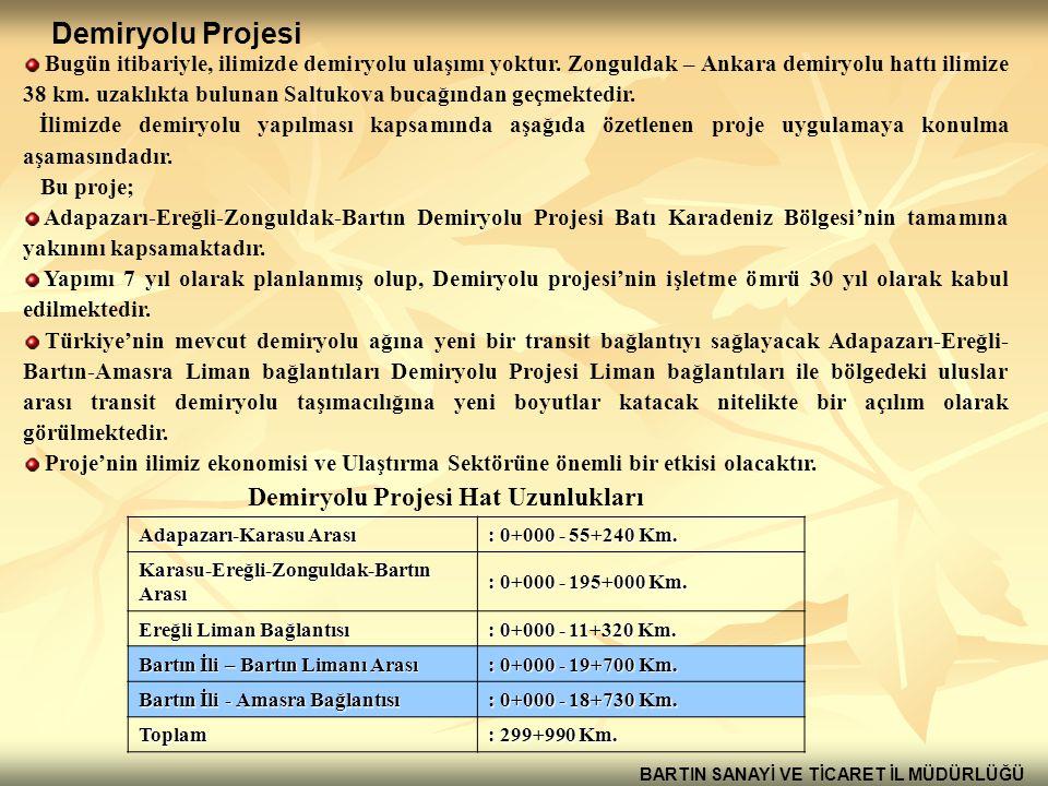 Demiryolu Projesi Hat Uzunlukları